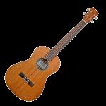 kisspng-ukulele-musical-instruments-concert-guitar-5afa938b712fc2.6710638415263712114636